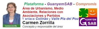 area carmen zorrilla y zona