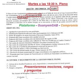 Pleno 31 mayo 2016